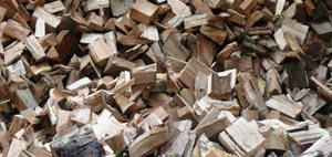 Logs For Sale in West Sussex
