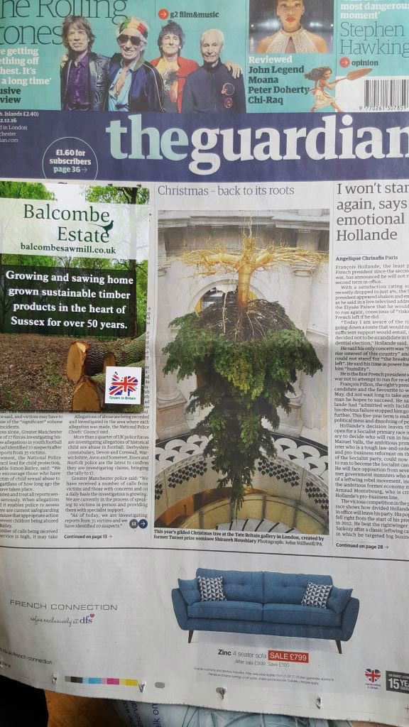 Christmas Tree - Front Page Guardian - Sussex Sawmill